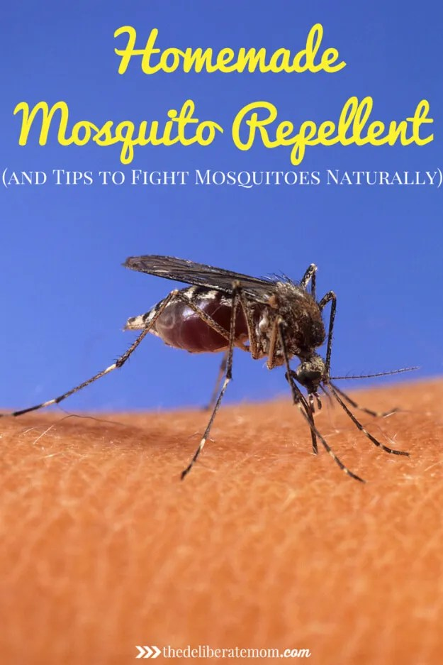 Are the mosquitoes driving you crazy? Are you the person who's covered with mosquito bites every summer? Here are various tips to fight those mosquitoes naturally AND a homemade mosquito repellent recipe. This DIY formula will help you take your summers back!