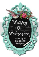 wow Waiting On Wednesday #39: Hidden by Sophie Jordan