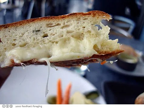 grilled cheesey