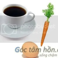 Con là củ cà rốt, quả trứng hay là cà phê?
