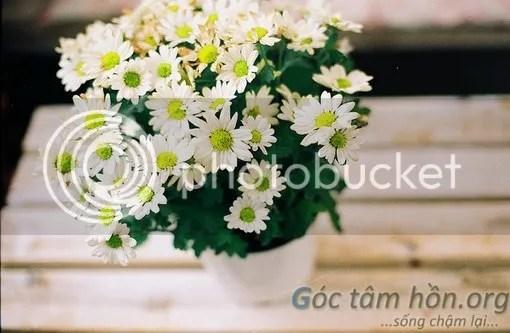 GocTamHonorg-dieu-thu-vi-cuoc-song_zpsc4317aca.jpg