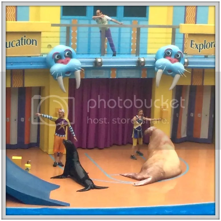 The animals and silly shows at Seaworld make it the perfect park to take a 2-5 year old who may be too small for rides at other Orlando theme parks.