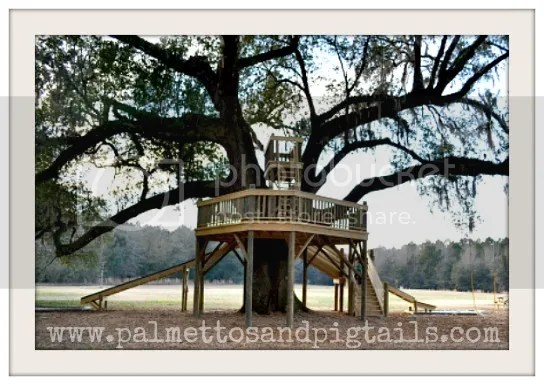 Neighborhood Treehouse from Palmettos and Pigtails