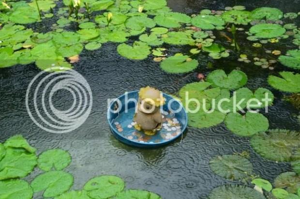 photo Beppu-15.jpg