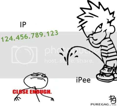 ip and ipee