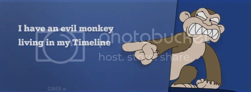Funny Monkey Timeline Cover