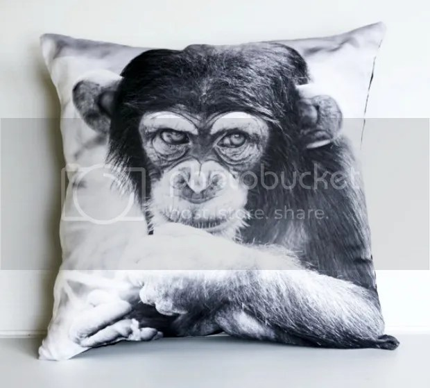 photo monkey_pillow_my_bearded_pigeon_shop