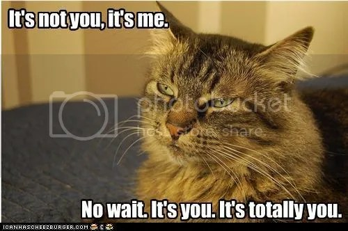 @JLenniDorner meme on blog w cat. It's not you it's me. No, wait, it's you. It's totally you.