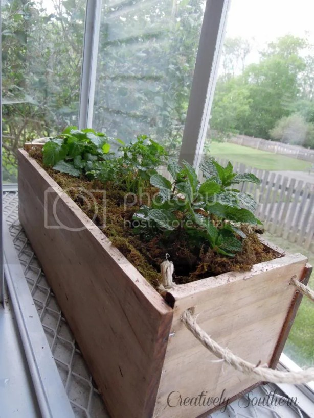 gro project planter box