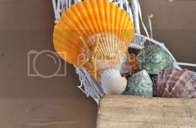 How to make a seashell wreath for summer