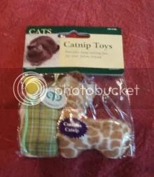 Toxic Cat Toy