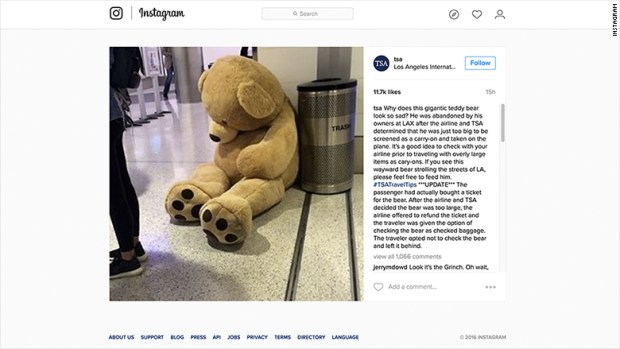 tsa teddy bear instagram