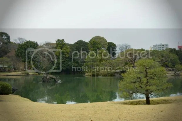 photo riku5.jpg