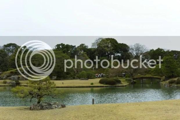 photo riku7.jpg