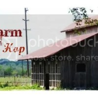 From The Farm Blog Hop & Storing and Drying Firewood
