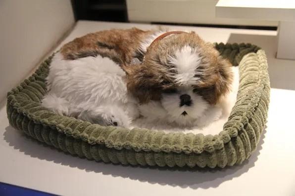 Stuffed puppy sleeping