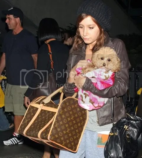 Ashley Tisdale's Louis Vuitton Sac Chien