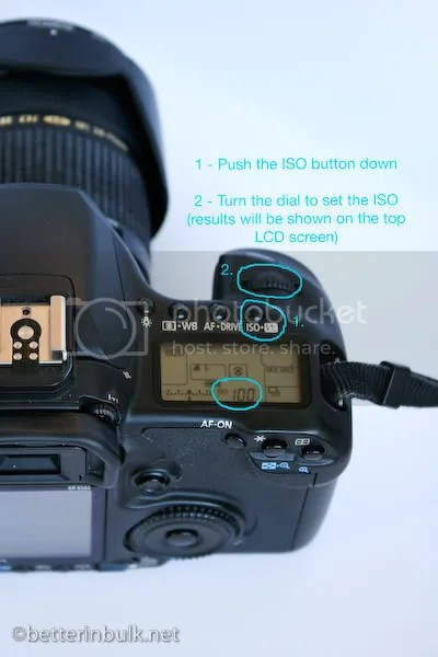 How to adjust ISO on Canon 40D
