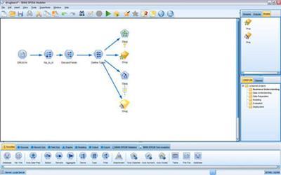 IBM SPSS MODELER 14.1 (x86)