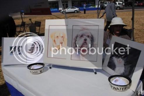 Talented Artist Offers Pet Portraits