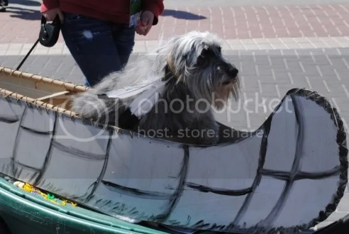 Barkus Float