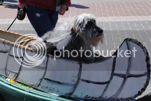 Barkus Float