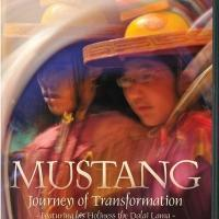 PBS - Mustang: Journey of Transformation (2010) 720p HDTV x264 AC3-MVGroup