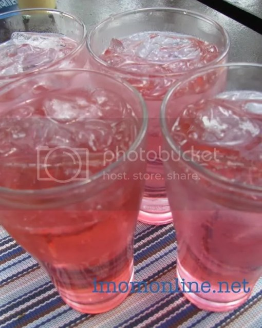 pink lemonade Canto Ketchup Food Community