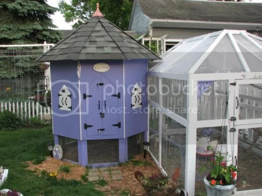 5633466 Unusual Chicken Coops