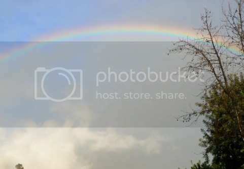 P1190141.jpg full rainbow over Long Beach, Ca picture by GardenNerd