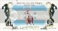 2010 Topps Allen & Ginter White Tailed Deer