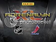 2010/11 Panini Adrenalyn Hockey NHL Sheet