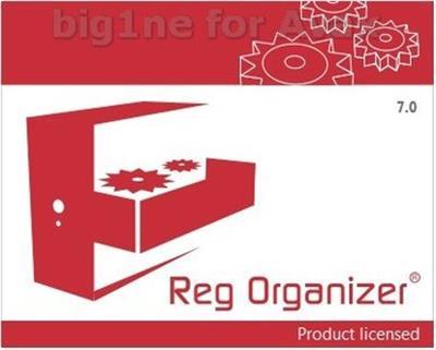 Reg Organizer 7.20 DC 01.12.2015