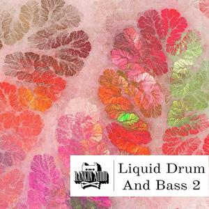 Rankin Audio Liquid Drum and Bass 2.WAV
