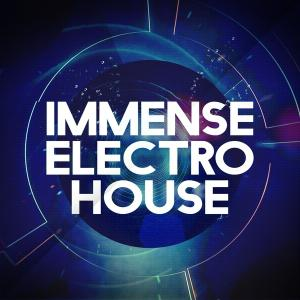 Immense Sounds Immense Electro House