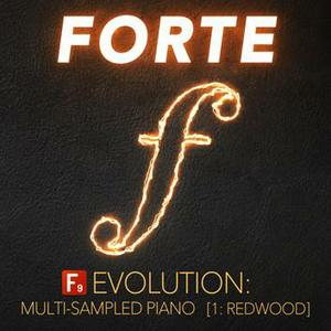 F9 Audio - FORTE Evolution Piano1 Redwood For Ableton Live