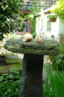 stone bird table