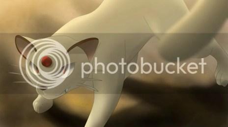 photo persian_by_all0412-d6old3w_zpso8ne9rbj.jpg