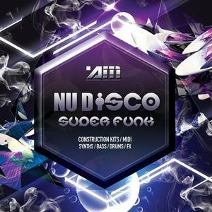 Audio Masters Nu Disco Superfunk.WAV MiDi