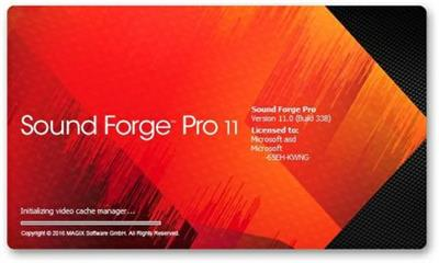MAGIX Sound Forge Pro 11.0 Build 345.Multilingual