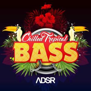 ADSR Sounds Chilled Tropical Bass-MULTiFORMAT