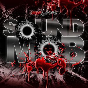 MVP Loops Sound Mob MULTiFORMAT / LiVE