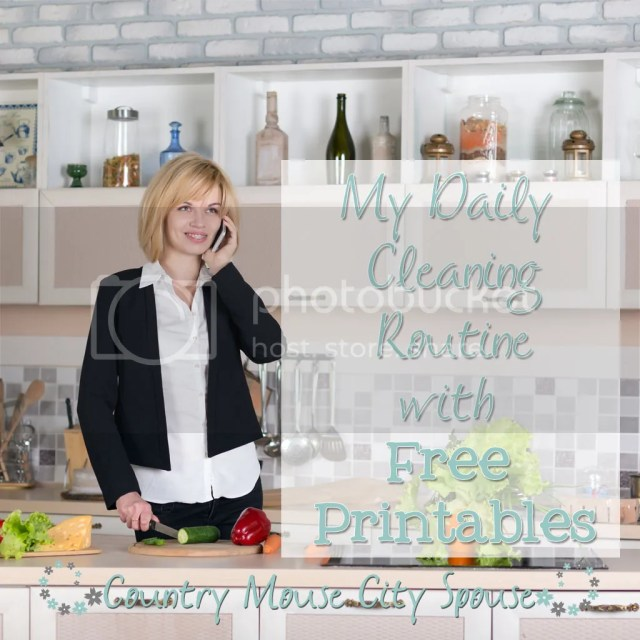 Country Mouse City Spouse My Daily Cleaning Routine with FREE Printables