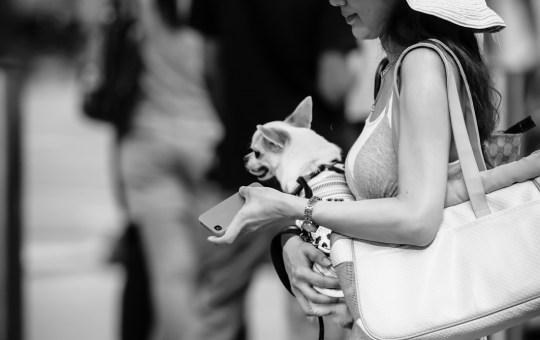 Street photography - Lady wearing a hat and carrying a toy dog