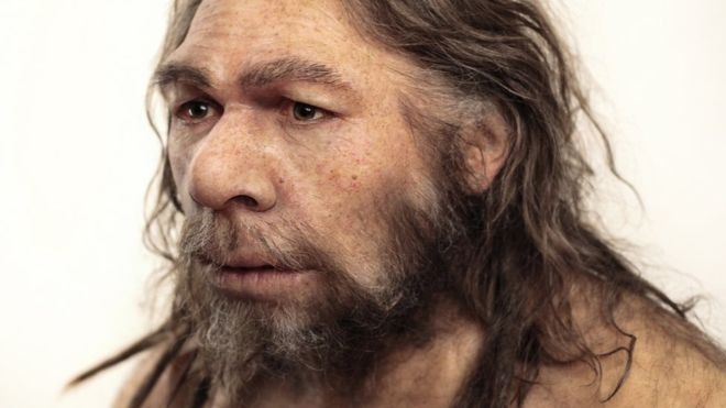 Neanderthals: a love story