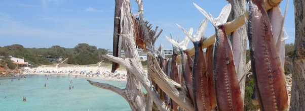Peix assecant-se al sol de Formentera