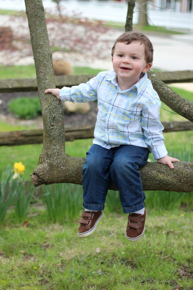 owen-33months-intree