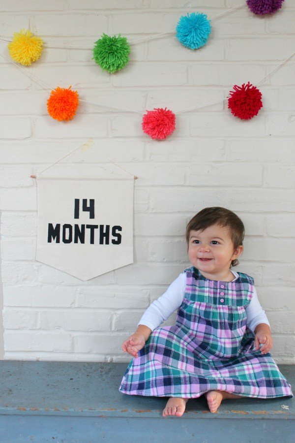 Toddler Second Year Progression Monthly Photos