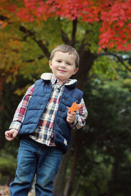 toddler boy autumn photos
