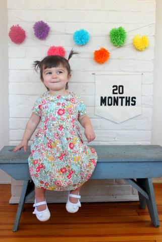 20 Months - Carm 11